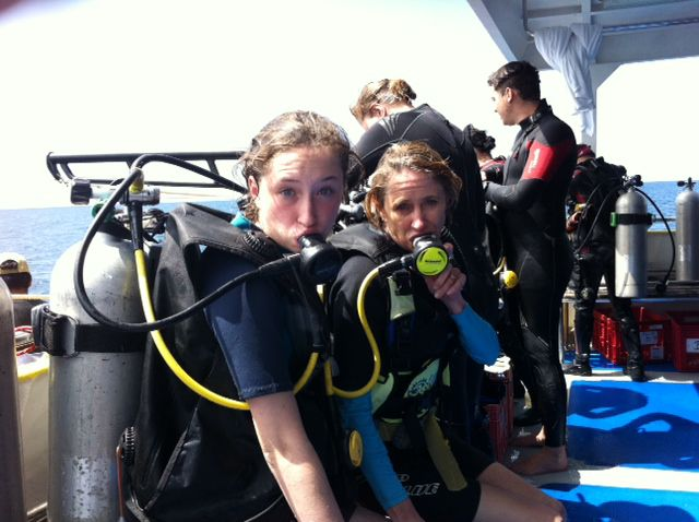 review diving similans